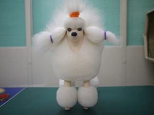 Puppy51