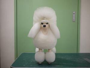 Puppy57