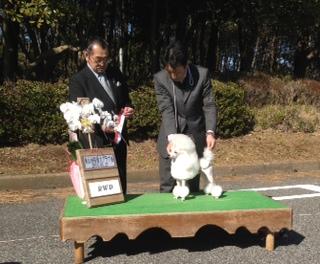 東京南桜愛犬クラブ展!